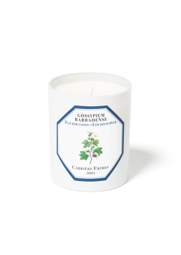 Candle Cotton Flower 185gr