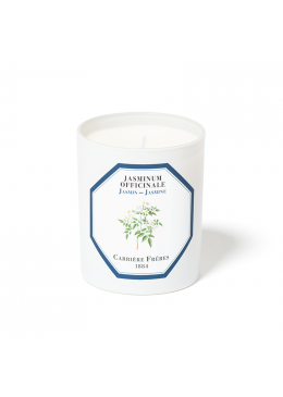Candle Carrière Frères Candle Jasmine 185gr