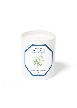 Nến Thơm Hương Hoa Nhài Candle Jasmine 185gr