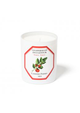 Nến Thơm Hương Cà Chua Candle Tomato 185gr